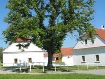 Penzion Hřebčína Favory