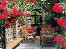 pergola-v-zahrad