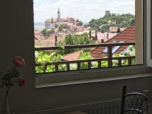 vhled-z-okna-pokoj-do-zahrady