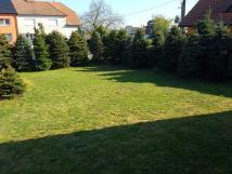 zahrada-penzion-staa