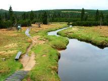 safrov-potok