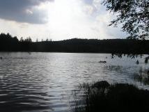 velkopaezit-rybnk-05-km