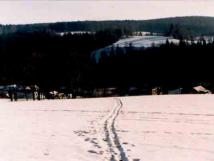 okol-eliva-v-zim