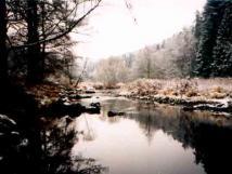 elivka-v-zim
