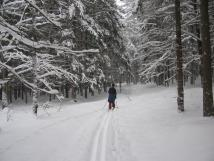 zimn-bkask-trat