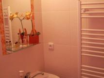 koupelna-s-umyvadlem-a-sprchovym-koutem-wc