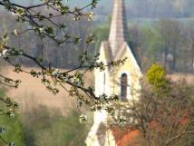 kaplika-