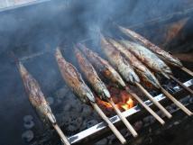 v-lt-kad-ptek-grilujeme-makrely