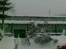 zima-2010