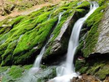 zelen-potok
