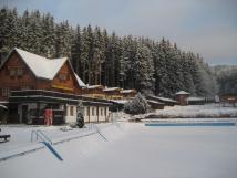 arel-v-zim