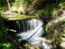 soust-zahrady-pod-chatou-je-snn-potok
