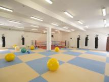 tlocvina-s-boxerskm-ringem-a-aparty