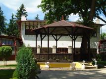 altnek-v-parku