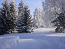 okol-domu-v-zim