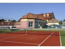 tenisov-kurt-v-arelu