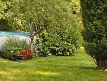 zahradn-bazn