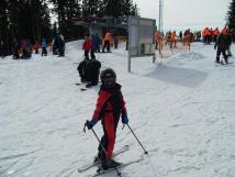 skiarel