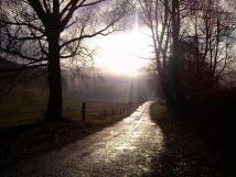 cesta-u-kruce
