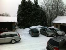 parkovn-v-zim