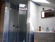 apartmn-1-koupelna-sprcha