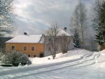 v-zim