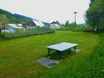 hit-ping-pong