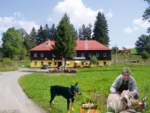 Hotel U Lišáka
