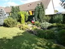 zahrada31