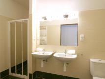 koupelna-v-pzem