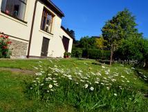 zahrada-kolem-domu