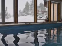 indoor-pool-in-winter
